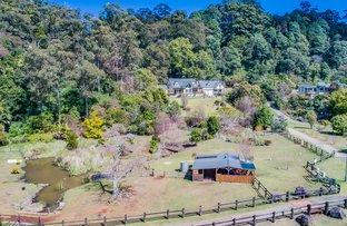 Picture of 107 The Shelf Road, Tamborine Mountain QLD 4272