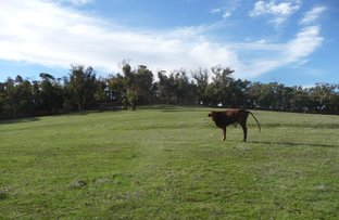 Picture of Lot 35 Chinganning Road, Copley WA 6562