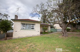 Picture of 12 PINE GROVE, Naracoorte SA 5271