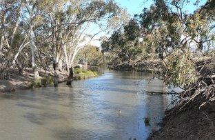 "Picture of ""Whiporie Park"" 1537ha - 3793ac, Conargo NSW 2710"