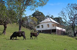 Picture of 679 Urliup Road, Urliup NSW 2484