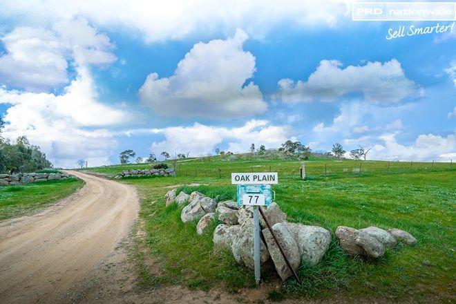 Picture of 77 Bavin Road, NORTH WAGGA WAGGA NSW 2650