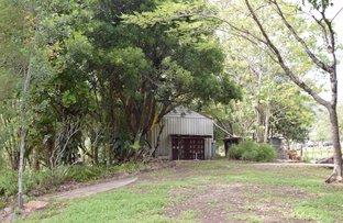 430 Mount Burrell Road, Mount Burrell NSW 2484