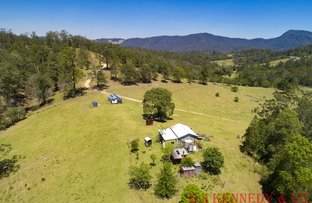 Picture of Burrapine NSW 2447