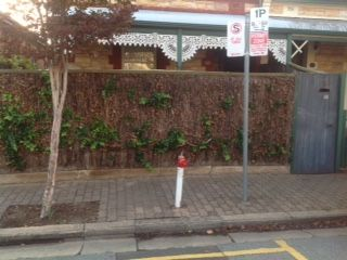 16 Corryton Street, Adelaide SA 5000, Image 0