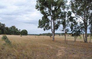 Picture of Lot 8 Land, Karara QLD 4352