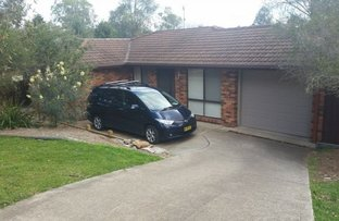 Picture of 22 Nott Place, Mount Annan NSW 2567