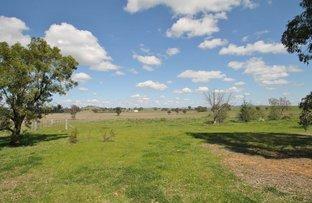 Picture of 24 Flirtation Hill Lane, Gulgong NSW 2852