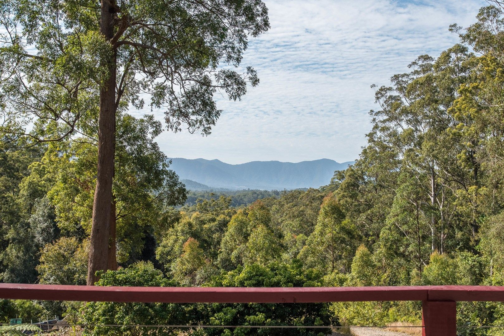 315 Boggy Creek Road, Thora NSW 2454, Image 1