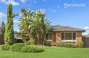 10 Cabernet Avenue, Eschol Park NSW 2558