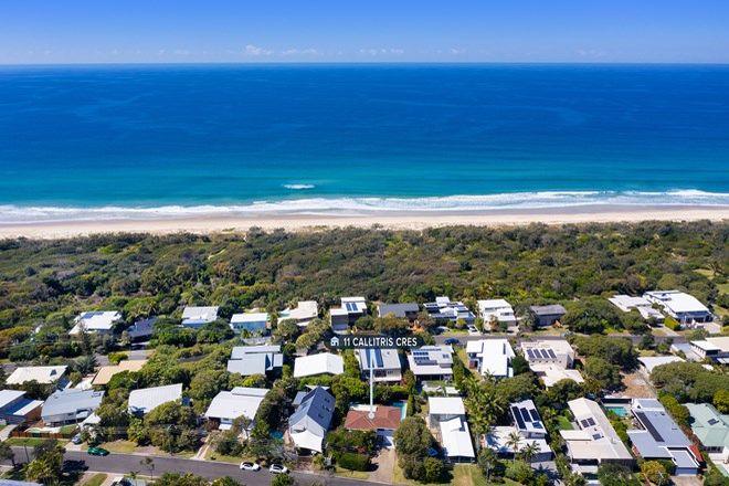 Picture of 11 Callitris Crescent, MARCUS BEACH QLD 4573