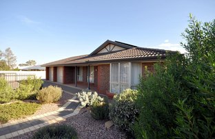 Picture of 11-13 Pilton Street, Port Augusta SA 5700