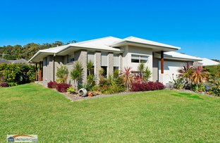 Picture of 25 Bain Place, Bonny Hills NSW 2445