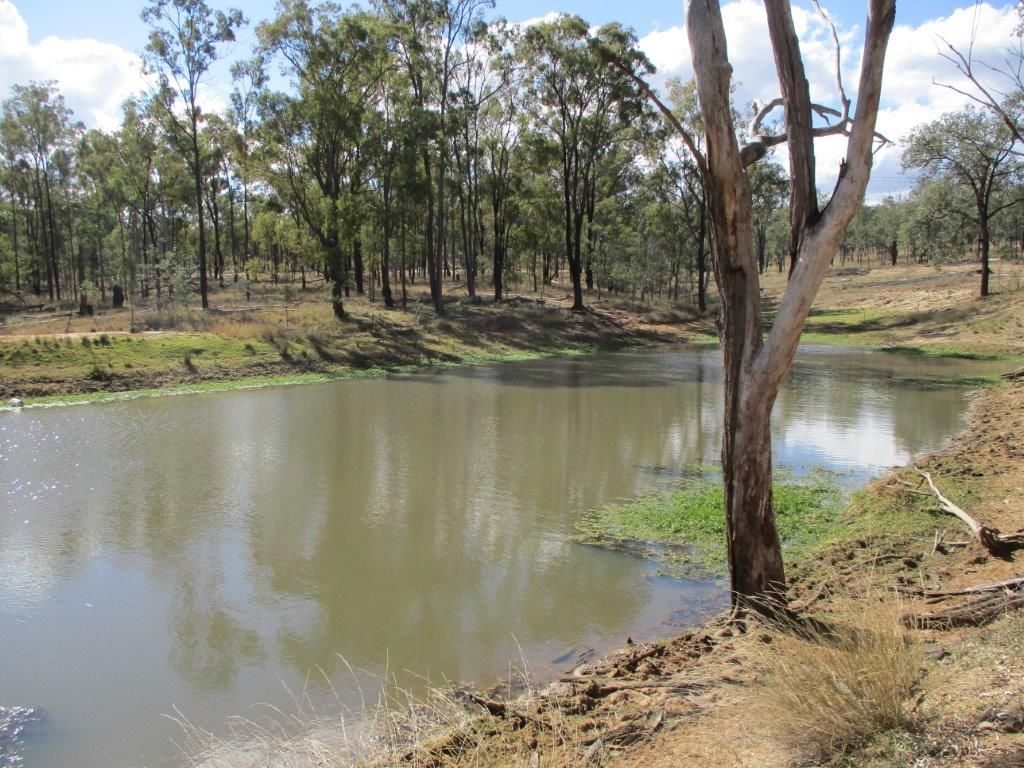 1264 ACRES BREEDER COUNTRY, Durong QLD 4610, Image 1