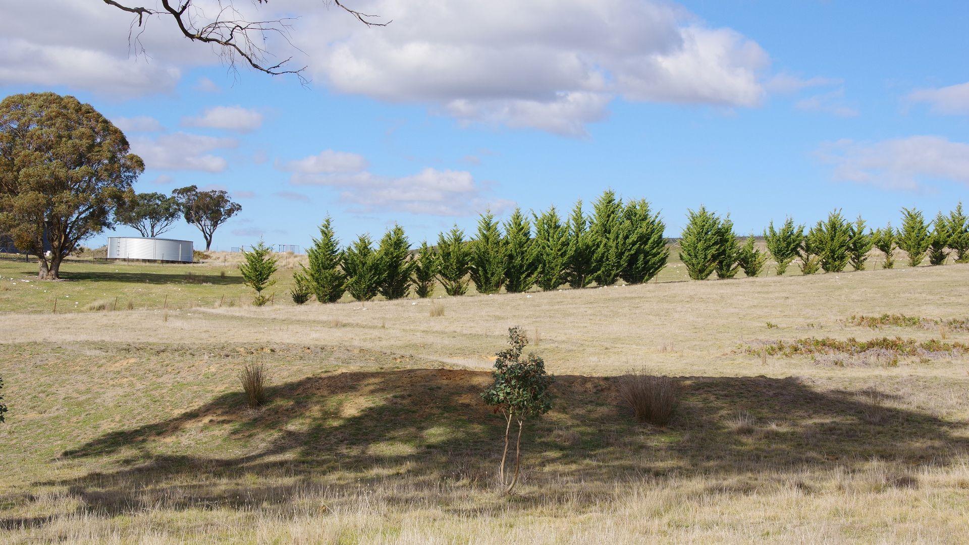 _ Iron Mine Road, Crookwell NSW 2583, Image 2