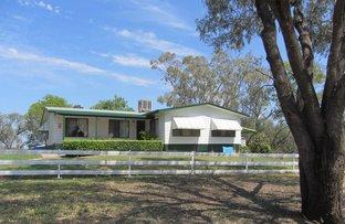 241 Stonnington Road, Moree NSW 2400