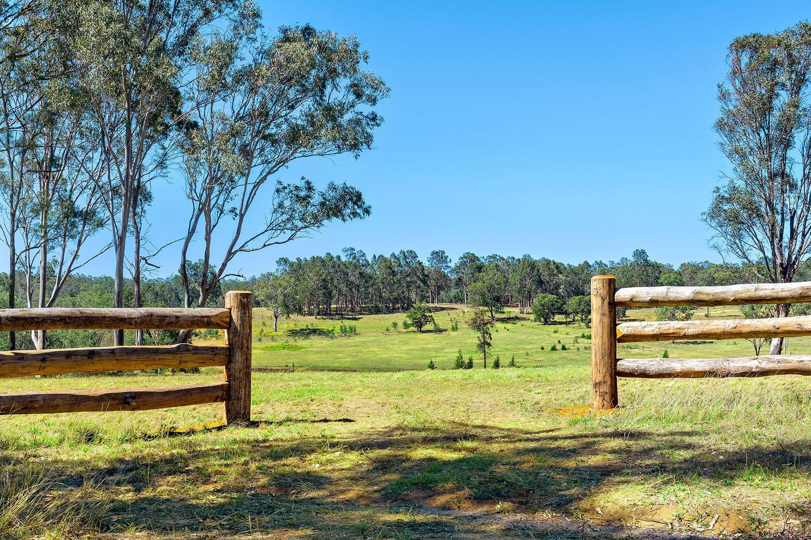Lot 9/1432 Wine Country Drive, Rothbury NSW 2320, Image 0