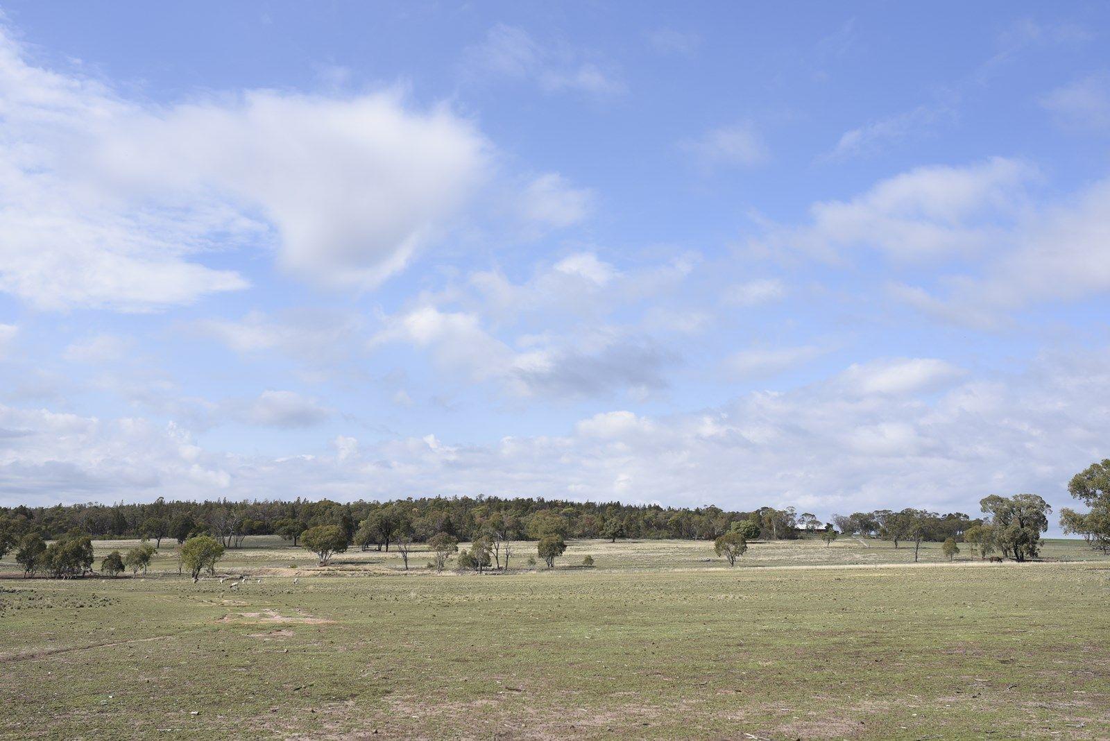 Peak Hill Road, Dubbo NSW 2830, Image 1