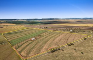 Picture of 'Brilin' 295 Holley Road, Mount Molar QLD 4361