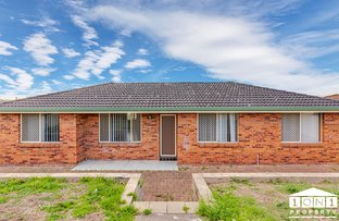 Picture of 52 Michael Hill Avenue, Woodberry NSW 2322