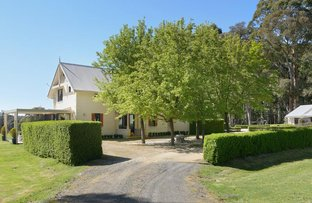 Picture of 831 Falloons Road, Ashbourne VIC 3442