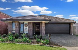 Picture of 15 Summerhill Crescent, Ormeau Hills QLD 4208
