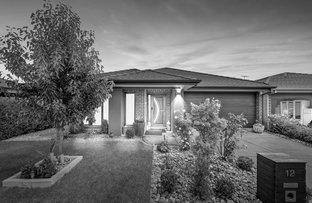 Picture of 12 Flemington Way, Clyde North VIC 3978