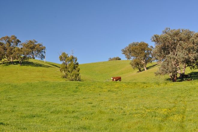 Picture of Lot 2 Howes Creek Road, HOWES CREEK VIC 3723