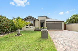 Picture of 34 Cartagena Lane, Coombabah QLD 4216