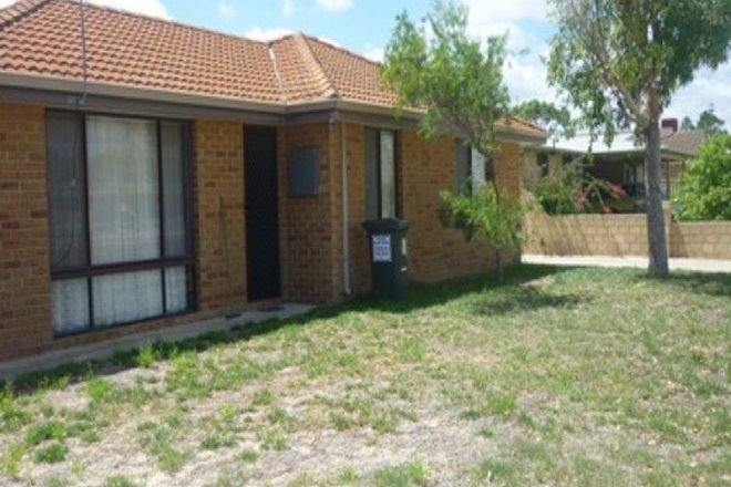 Picture of 8A Hasting Street, JURIEN BAY WA 6516