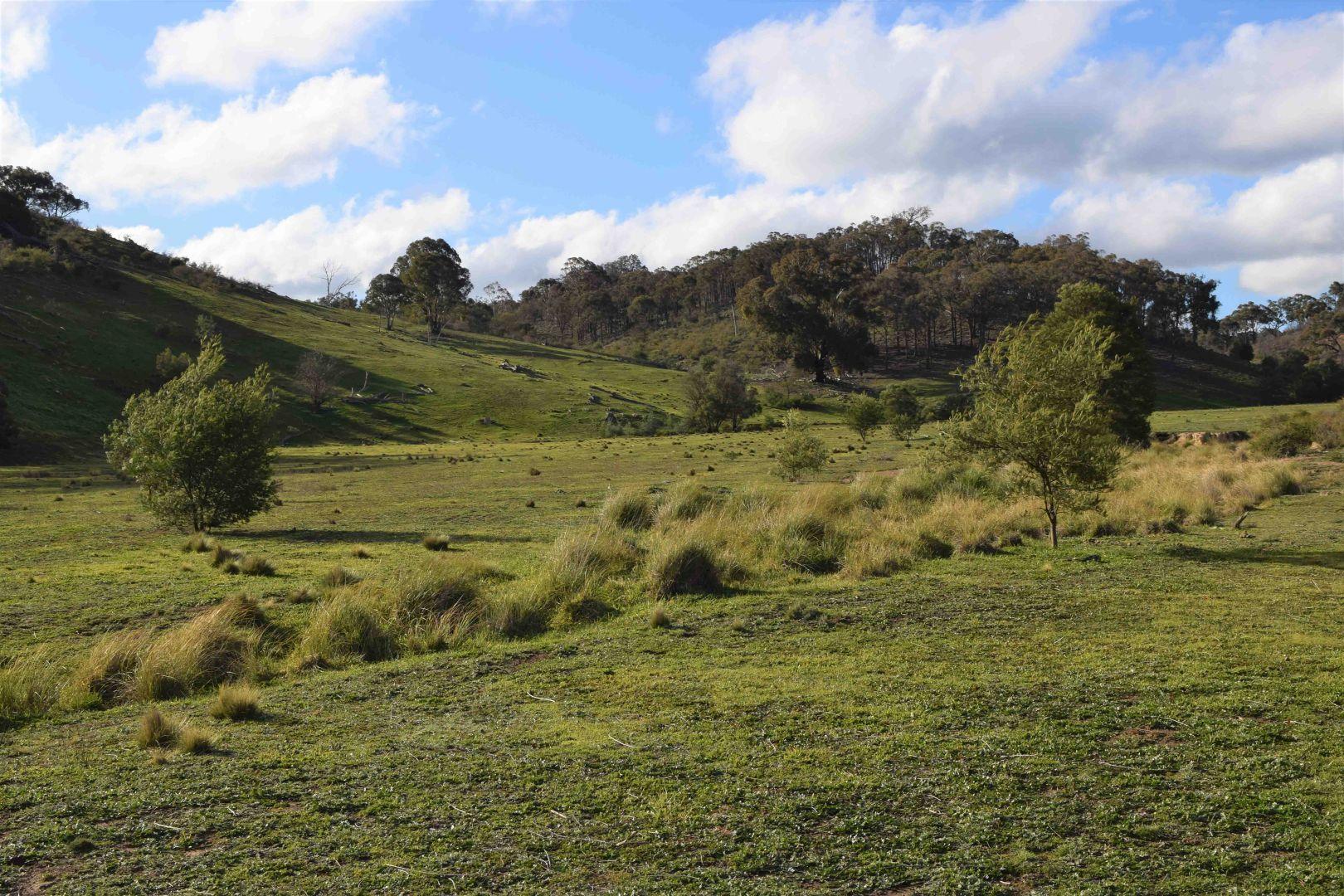 5, 1225 Yass River Road, Yass NSW 2582, Image 1