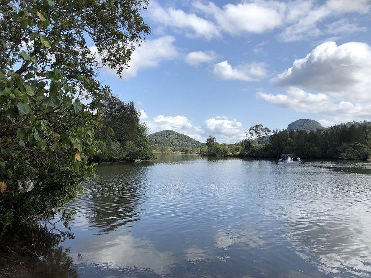12 Trevor Rd, Maroochy River QLD 4561, Image 2