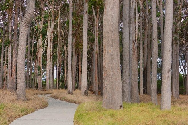Picture of Lot 226/11 Lumber Crescent, KARRIDALE WA 6288
