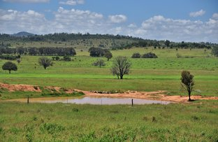 Picture of 'Uralla' 200 Morelands Road, Dululu QLD 4702