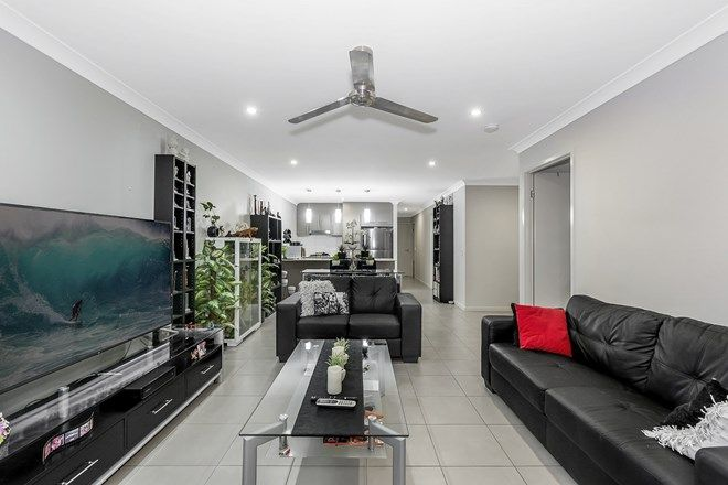 Picture of 1/12 Isetta Court, UPPER COOMERA QLD 4209