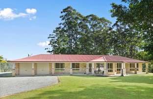 Picture of 41 Little Bago Lane, Herons Creek NSW 2443