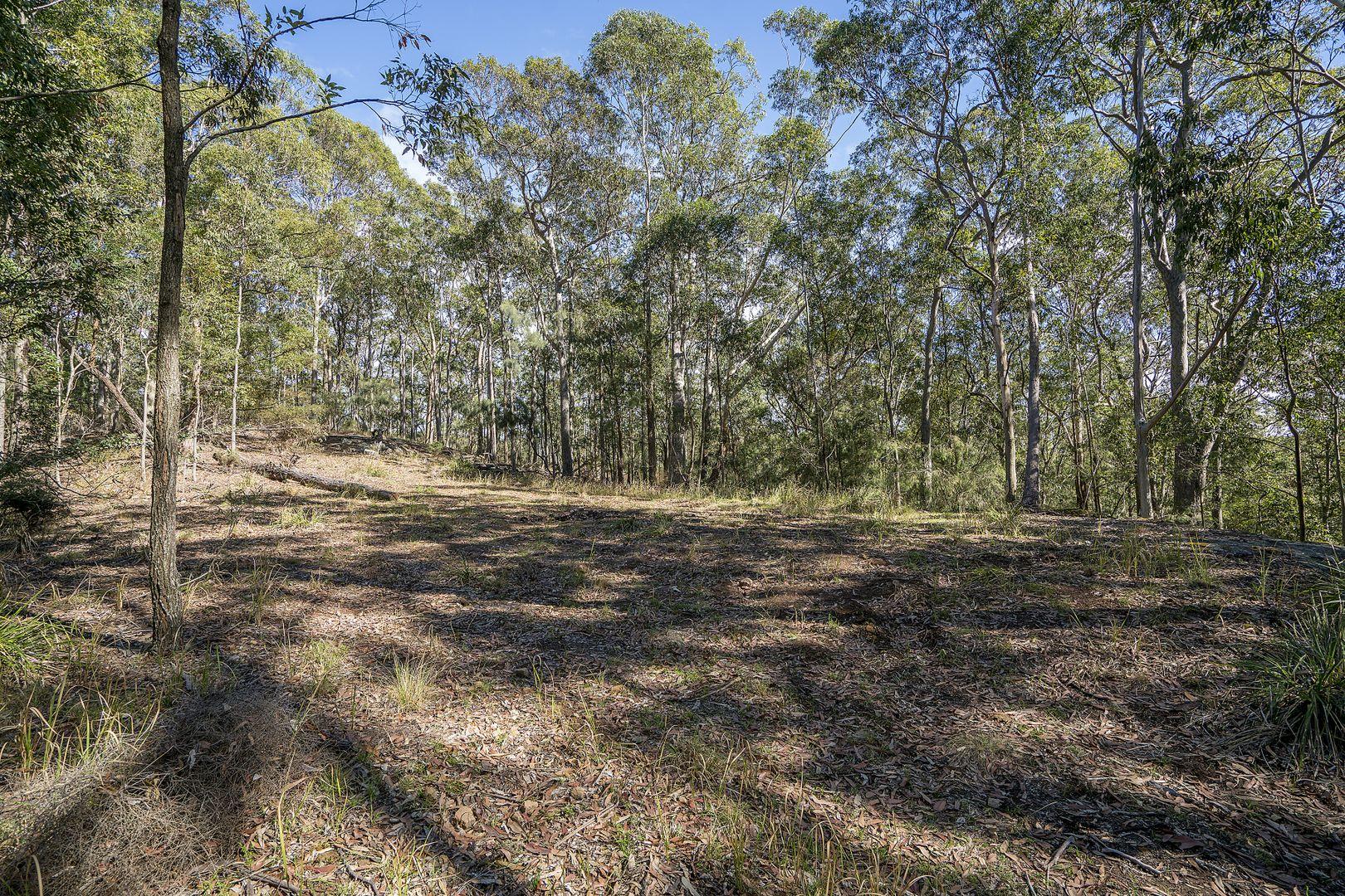 439 Sauls Road, Mandalong NSW 2264, Image 1