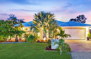 Picture of 25 Olivevale Street, Ormeau QLD 4208
