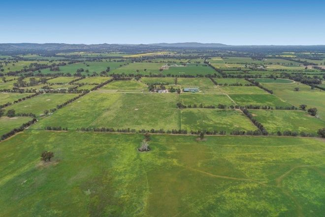 Picture of 137 Martins Road, TABILK VIC 3607