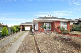 Picture of 21 Ainslie Ave, Grovedale VIC 3216