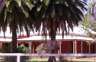 . Werai Station, Deniliquin NSW 2710