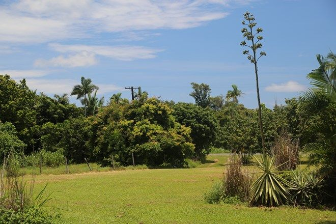 Picture of 250 MARTYVILLE ROAD, MARTYVILLE QLD 4858