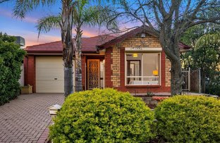 Picture of 5 Satinwood Close, Greenwith SA 5125