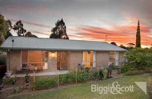 Picture of 230 Melbourne Road, Brown Hill VIC 3350