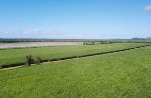 Picture of Cnr Stephenson Road & Rinaudo Road, Lower Cowley QLD 4871