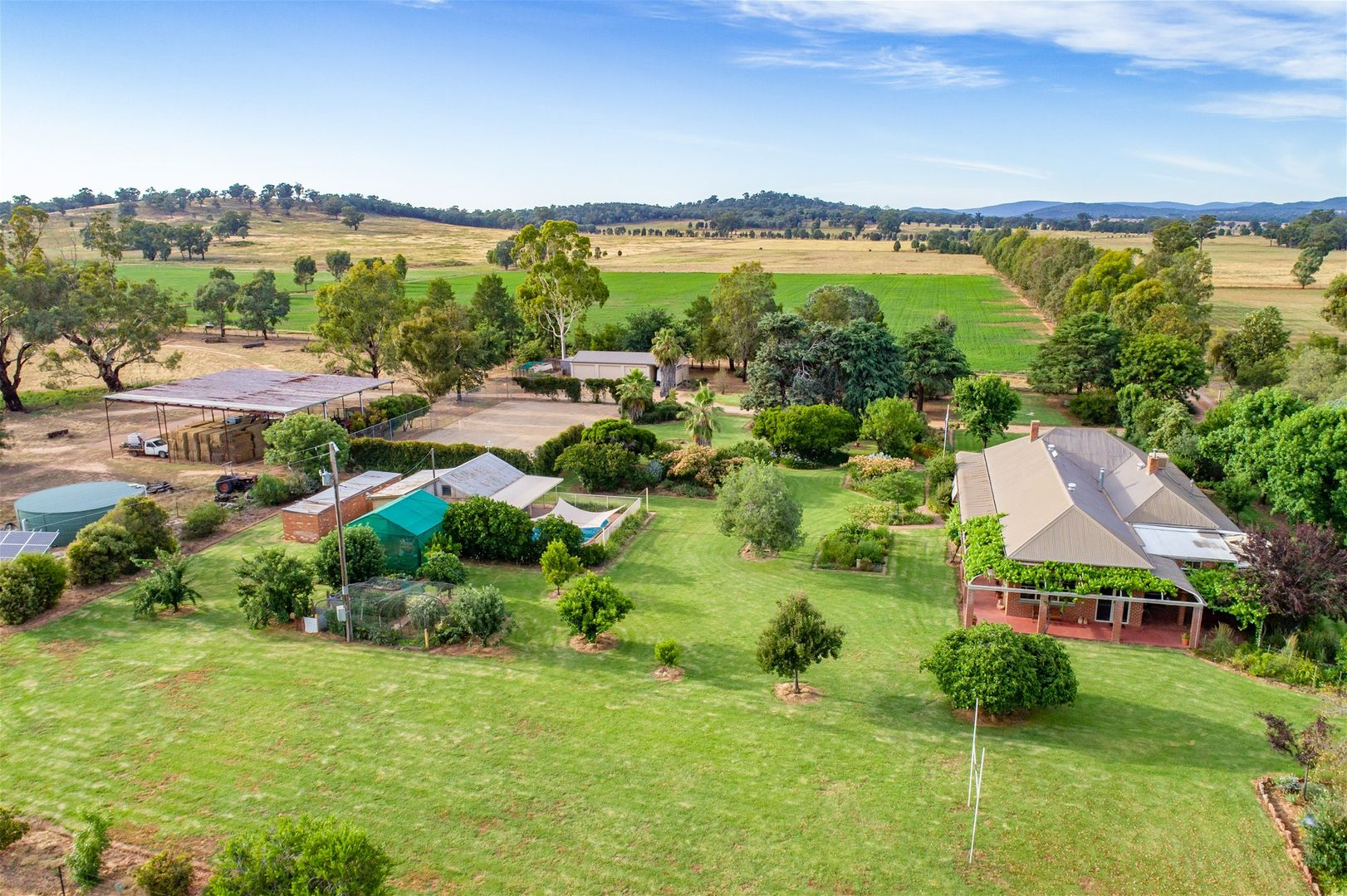59 GRANTVILLE ROAD, Gooloogong NSW 2805, Image 0
