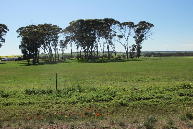 Picture of 66 Pingelly Heights Road, PINGELLY WA 6308
