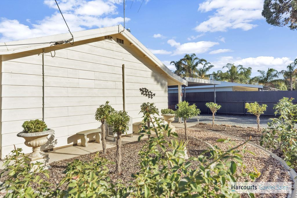 19 Panter Street, Willaston SA 5118, Image 1