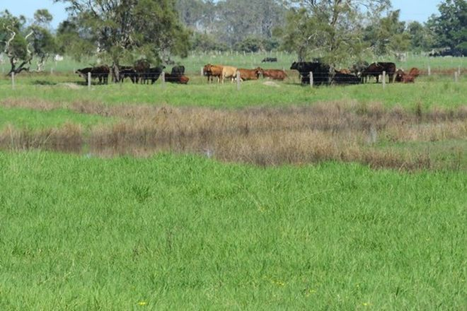 Picture of 742 Hat head Rd, KINCHELA NSW 2440