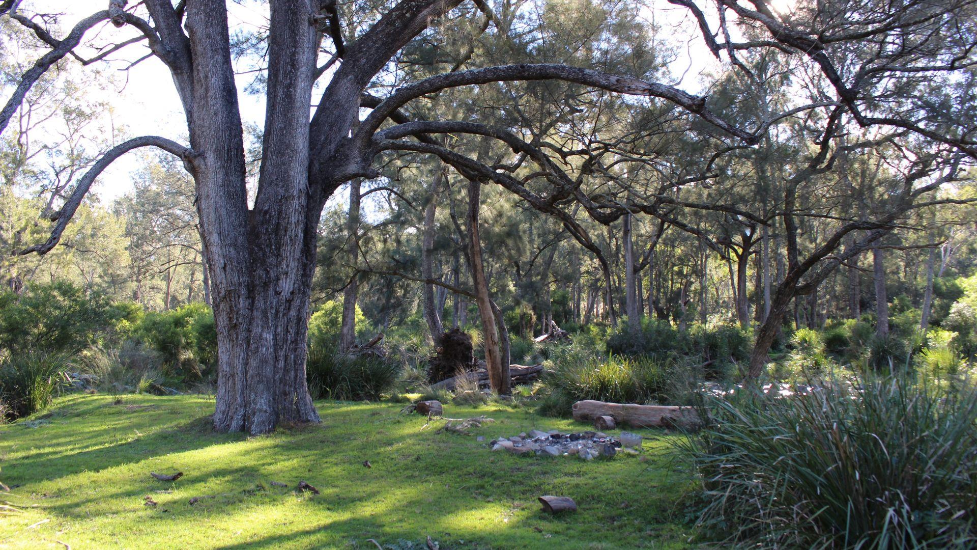 454 Bruxner Way, Tenterfield NSW 2372, Image 1
